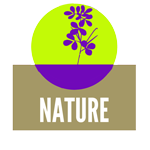Nature Graphic