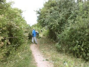 Volunteesr clearing vegetation overhanging a footpath