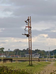 Derelict signal on southern bridge approach. Image Peter Drury