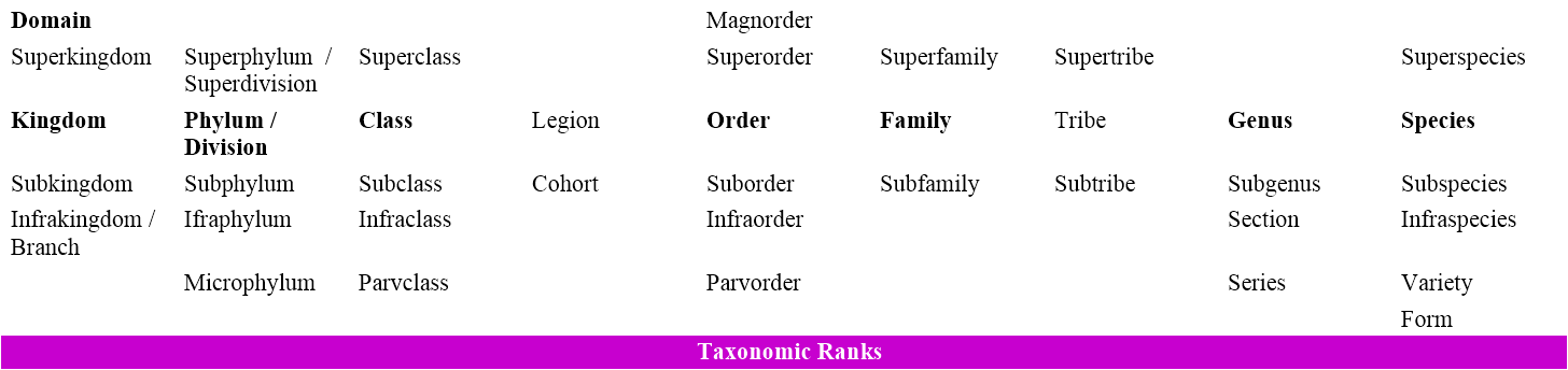 Taxonomic ranks