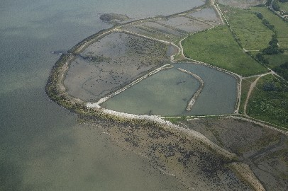 Aerial Photo Oysterbeds (Havant Borough Council)