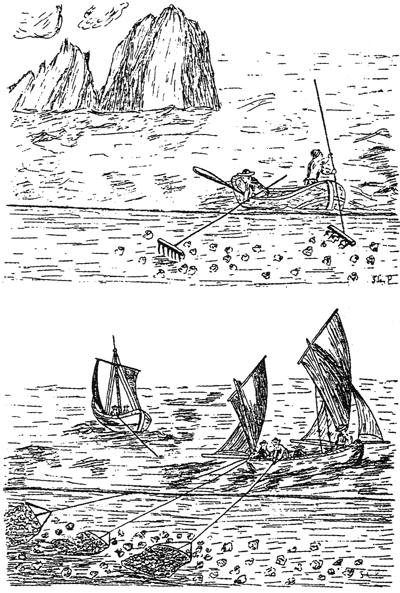 Oyster harvesting using rakes (top) and sail driven dredges (bottom). From L'Encyclpédie of 1771