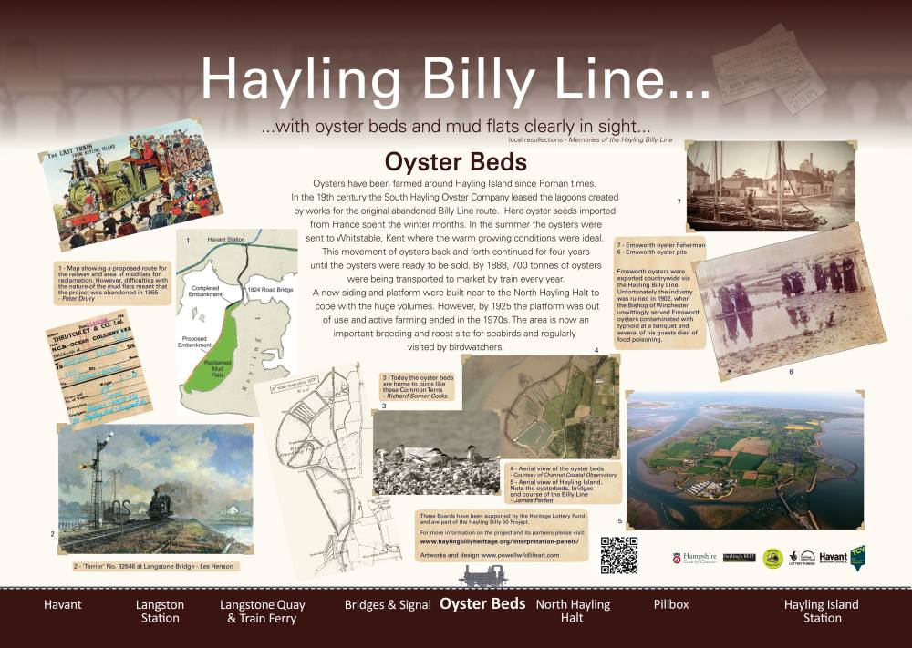 Oyster Beds Interpretation Panel - Dan Powell