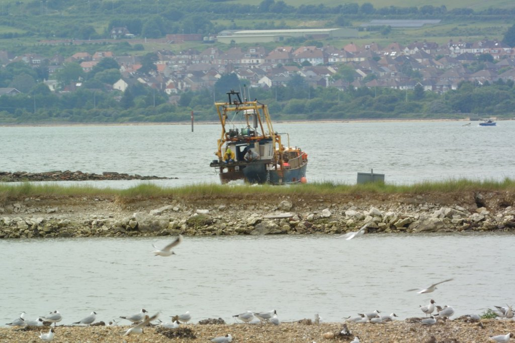 Clam Dredger - Chris Cockburn Submitted by peterd on Tue, 17/06/2014 - 08:26
